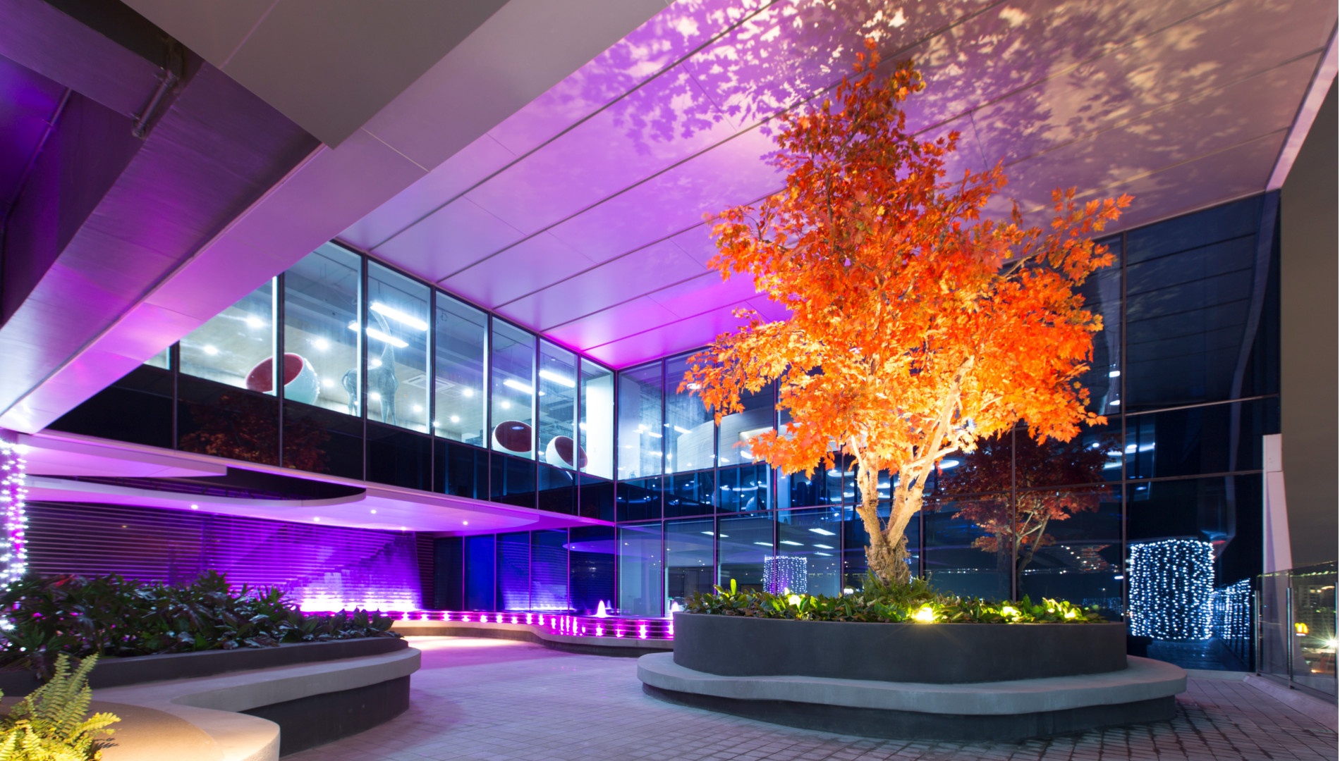 ASYA Design and Build Projects - SCAPE, ORANGE TREE